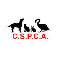 C.S.P.C.A